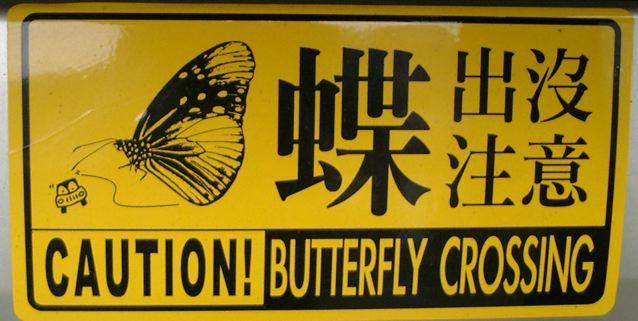 Schmetterlingsschild