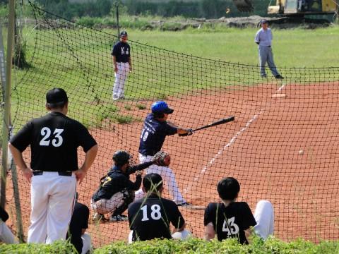 baseball taiwan