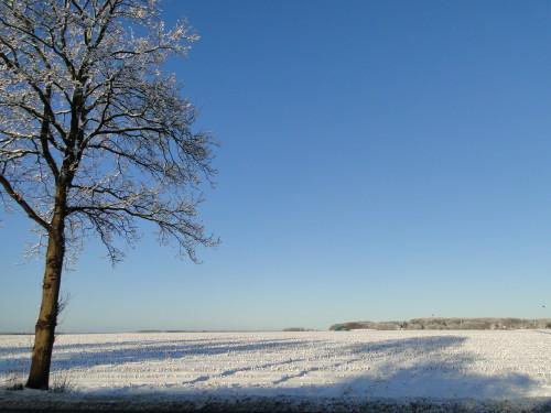 Acker im Winter Schnee