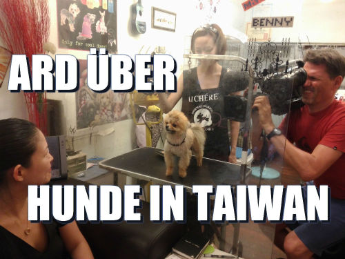 ARD Weltspiegel Schoßhunde in Taiwan
