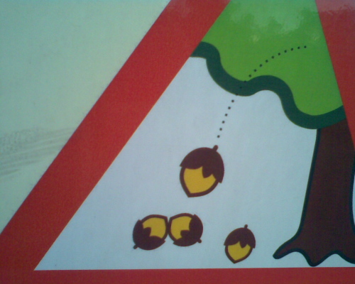 Acorns Warning Sign