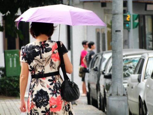 Regenschirm Sonnenschein