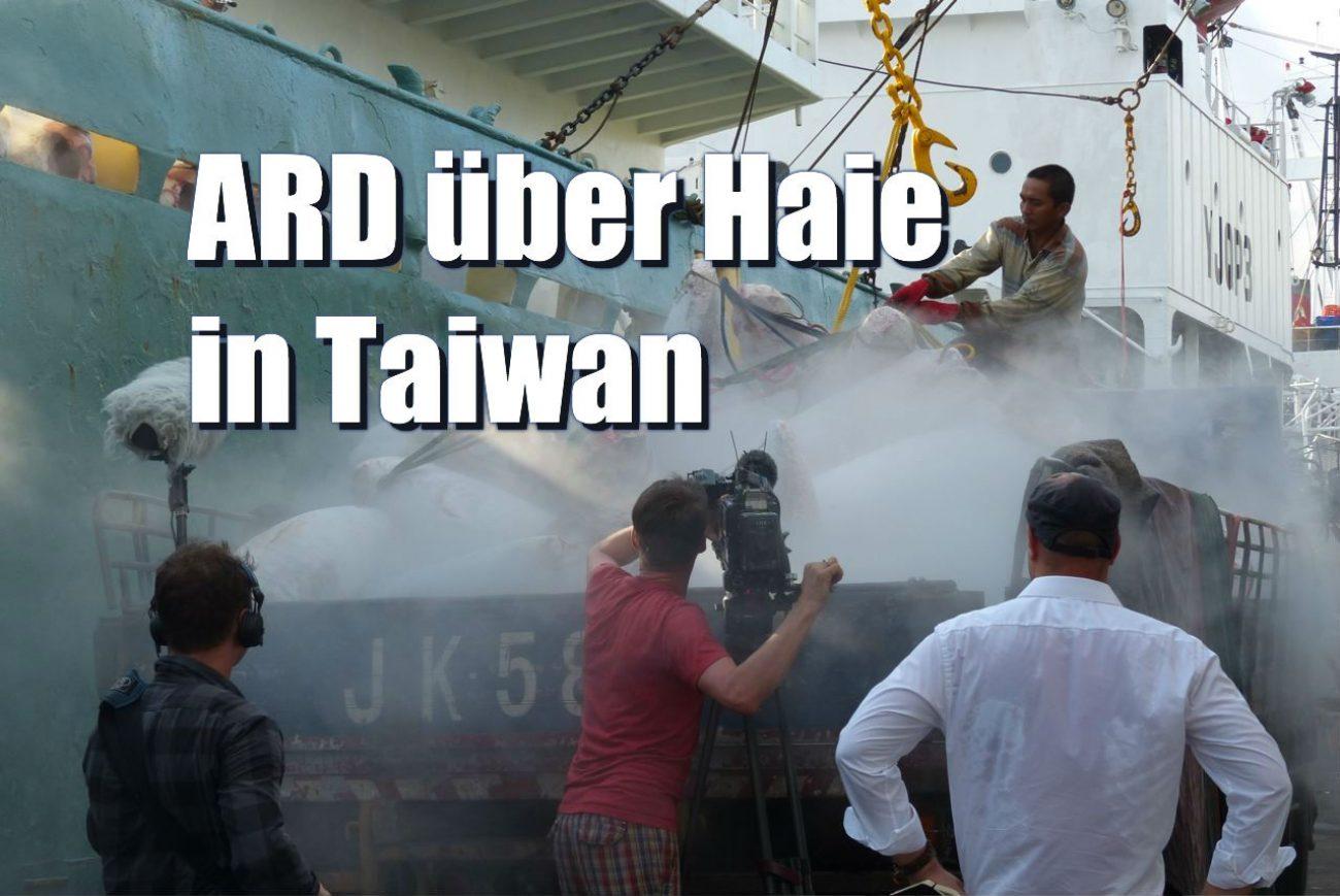 ARD Haie Taiwan Hafen Text